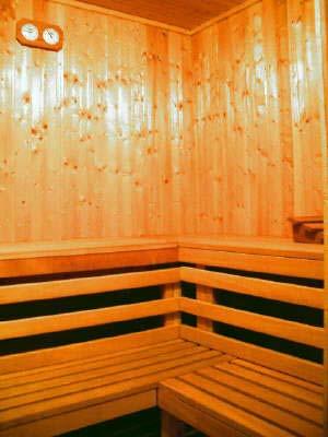 www dagobert sauna ludwigshafen